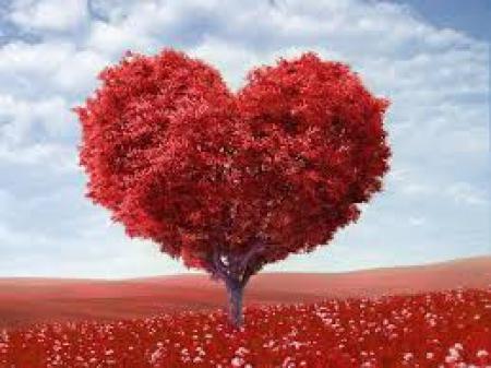 Walentynki zbliżają się wielkimi krokami ...